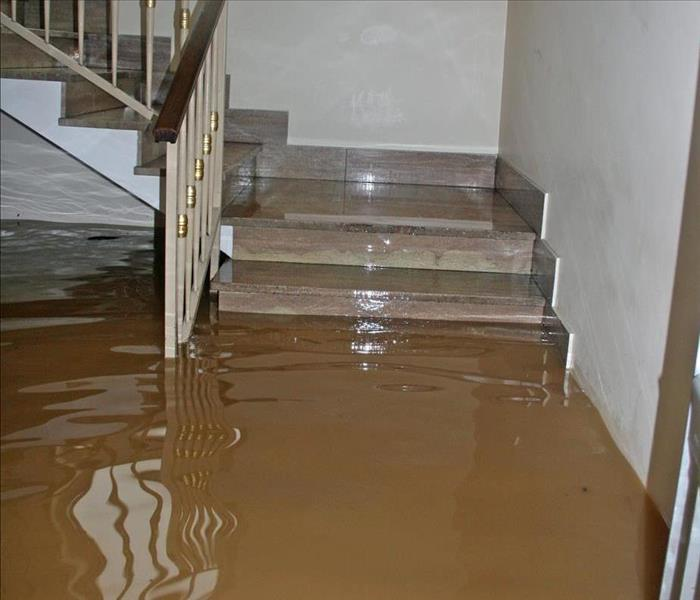Commercial Flood Water Removal: What to Expect